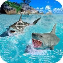 鲨鱼捕猎手