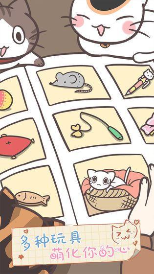 猫咪养生会所截图