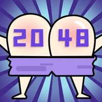 神奇的2048