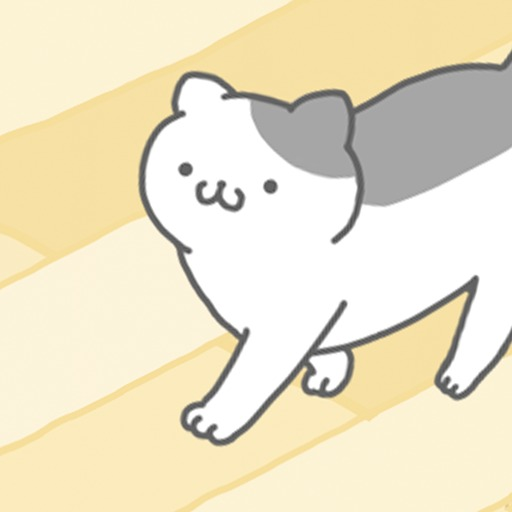 猫咪很可爱中文版