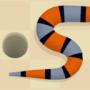 一条蛇的故事